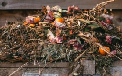 Que peut-on mettre dans un composteur bois ?